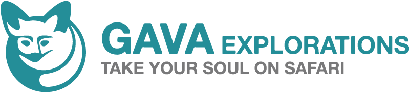 GAVA Explorations Logo
